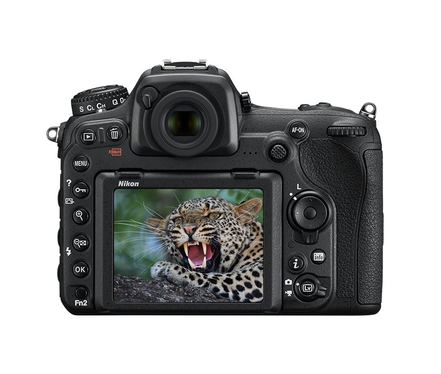 Nikon D500 For Wedding Photography: Body, Specs, Kits & Accessories